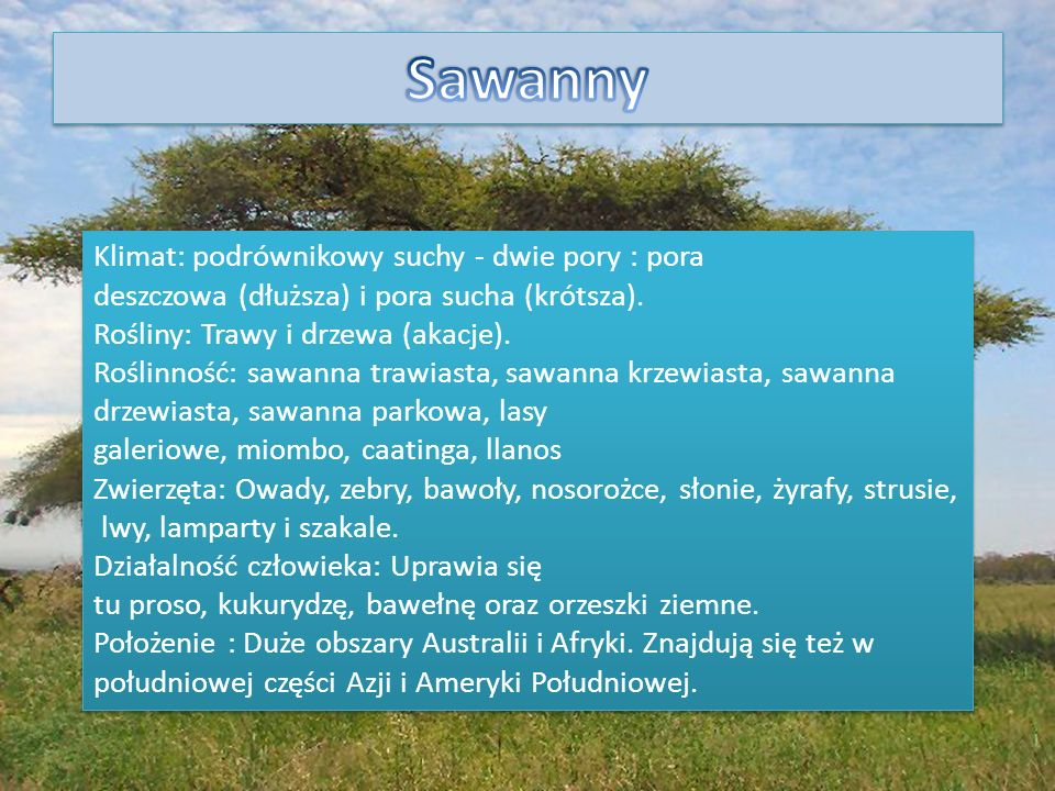 Sawanny Klimat: podrównikowy suchy - dwie pory : pora deszczowa (dłuższa) i pora sucha (krótsza). Rośliny: Trawy i drzewa (akacje).