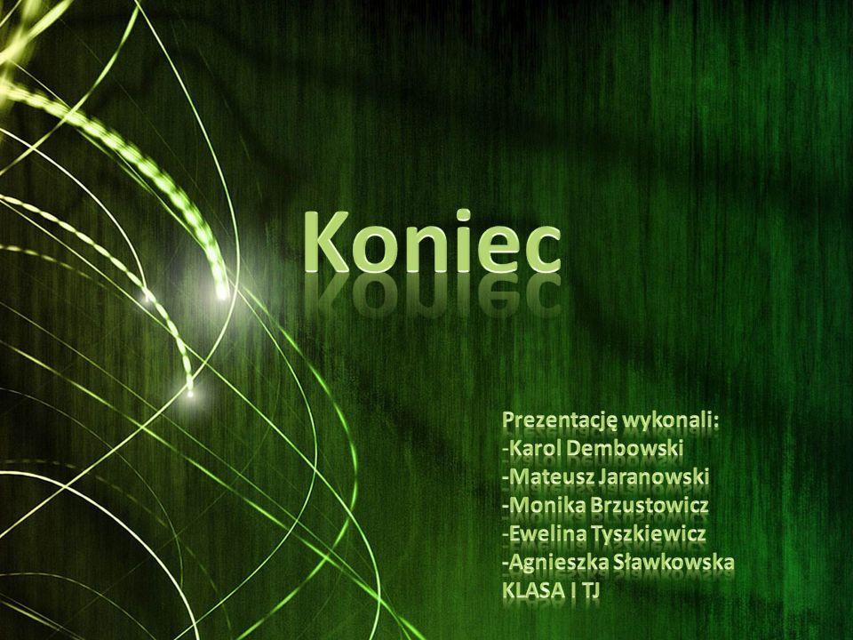 Koniec Prezentację wykonali: Karol Dembowski -Mateusz Jaranowski