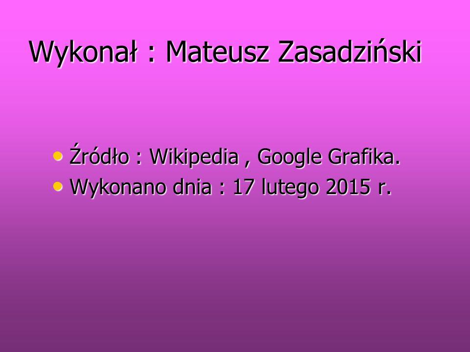 Wykonał : Mateusz Zasadziński