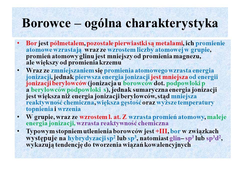 Borowce – ogólna charakterystyka