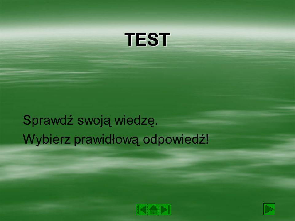 TEST Sprawdź swoją wiedzę. Wybierz prawidłową odpowiedź!