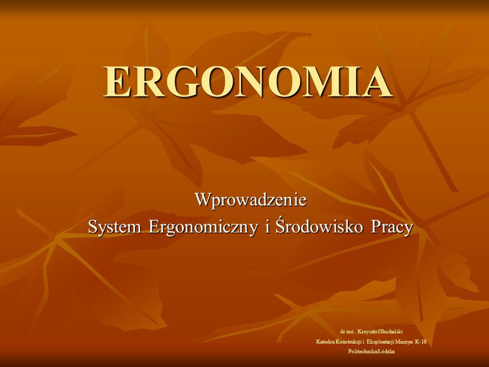 Wprowadzenie System Ergonomiczny i Środowisko Pracy