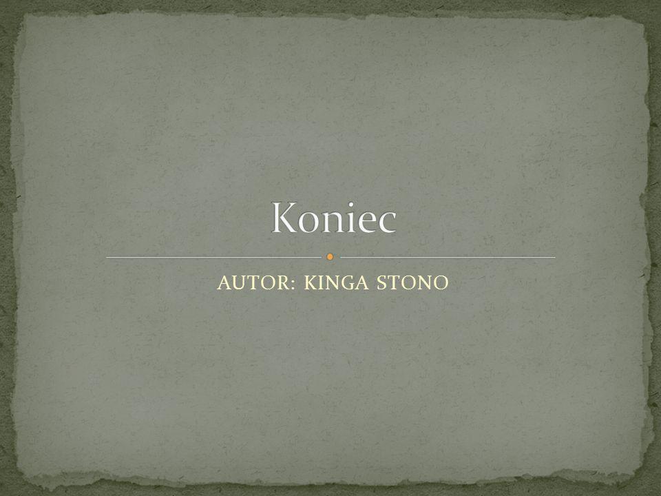 Koniec AUTOR: KINGA STONO