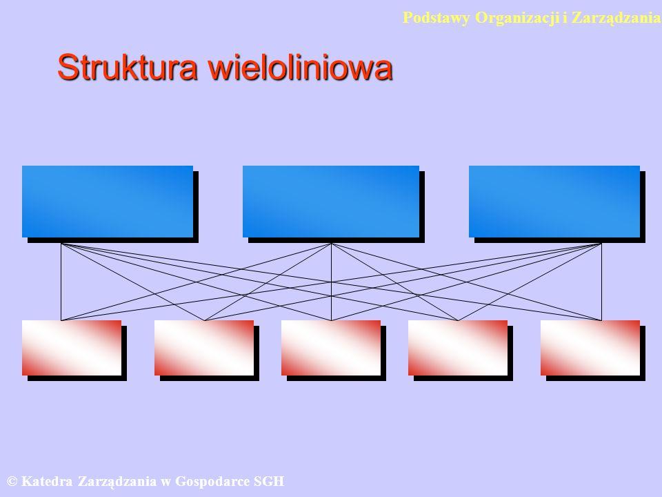 Struktura wieloliniowa