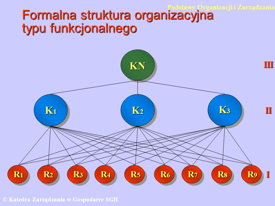 Formalna struktura organizacyjna typu funkcjonalnego