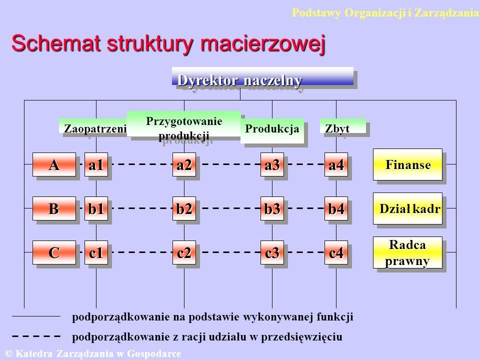 Schemat struktury macierzowej