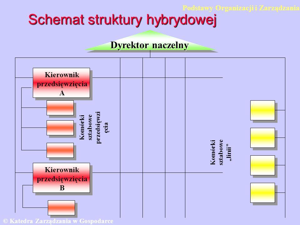 Schemat struktury hybrydowej