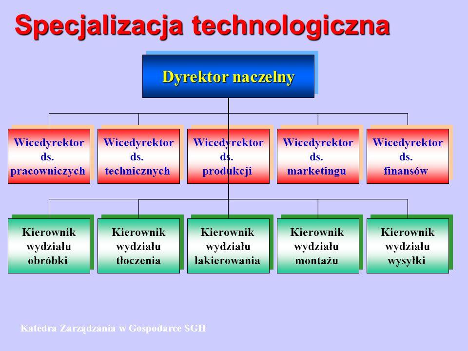 Specjalizacja technologiczna