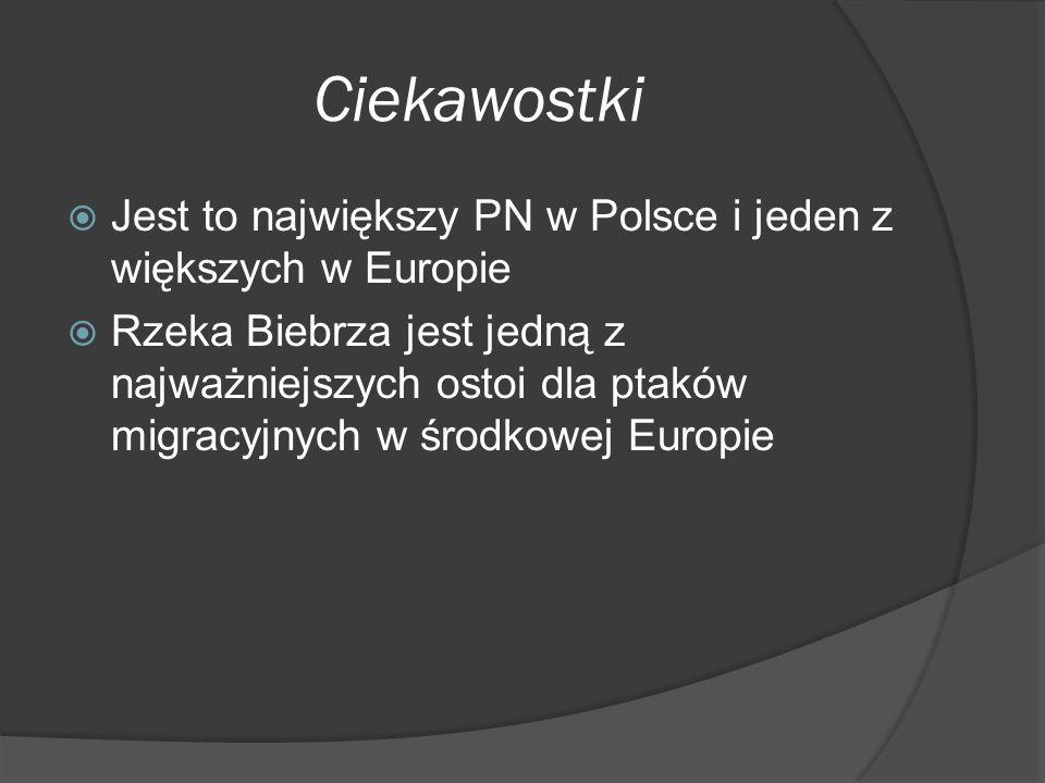Ciekawostki Jest to największy PN w Polsce i jeden z większych w Europie.
