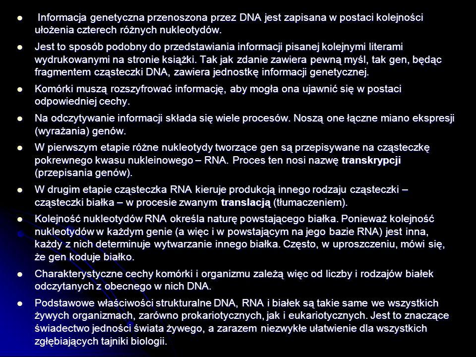 Informacja genetyczna przenoszona przez DNA jest zapisana w postaci kolejności ułożenia czterech różnych nukleotydów.