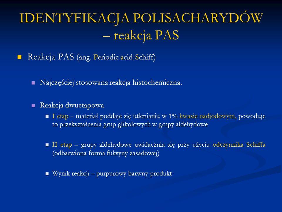 IDENTYFIKACJA POLISACHARYDÓW – reakcja PAS