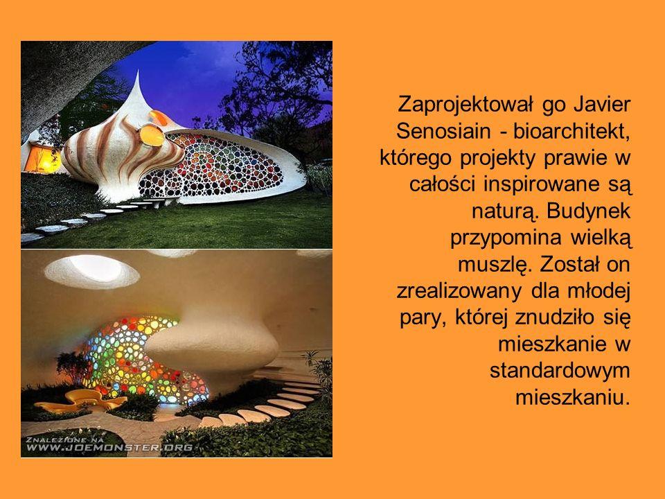 Zaprojektował go Javier Senosiain - bioarchitekt, którego projekty prawie w całości inspirowane są naturą.
