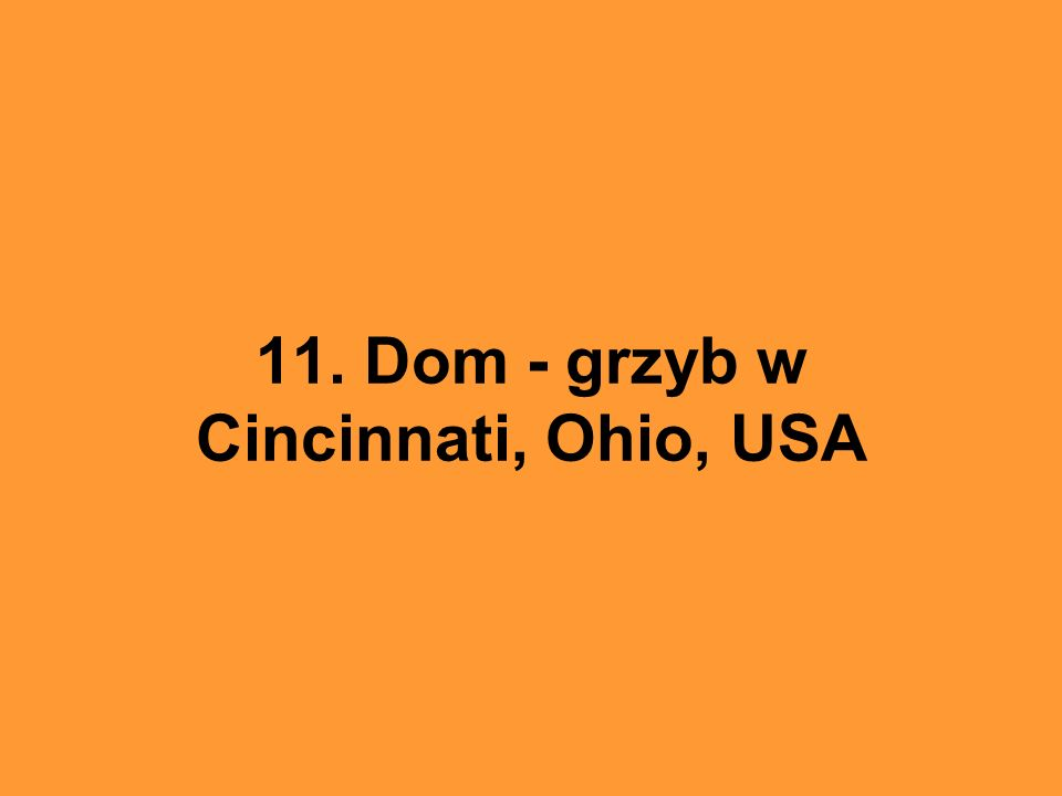 11. Dom - grzyb w Cincinnati, Ohio, USA