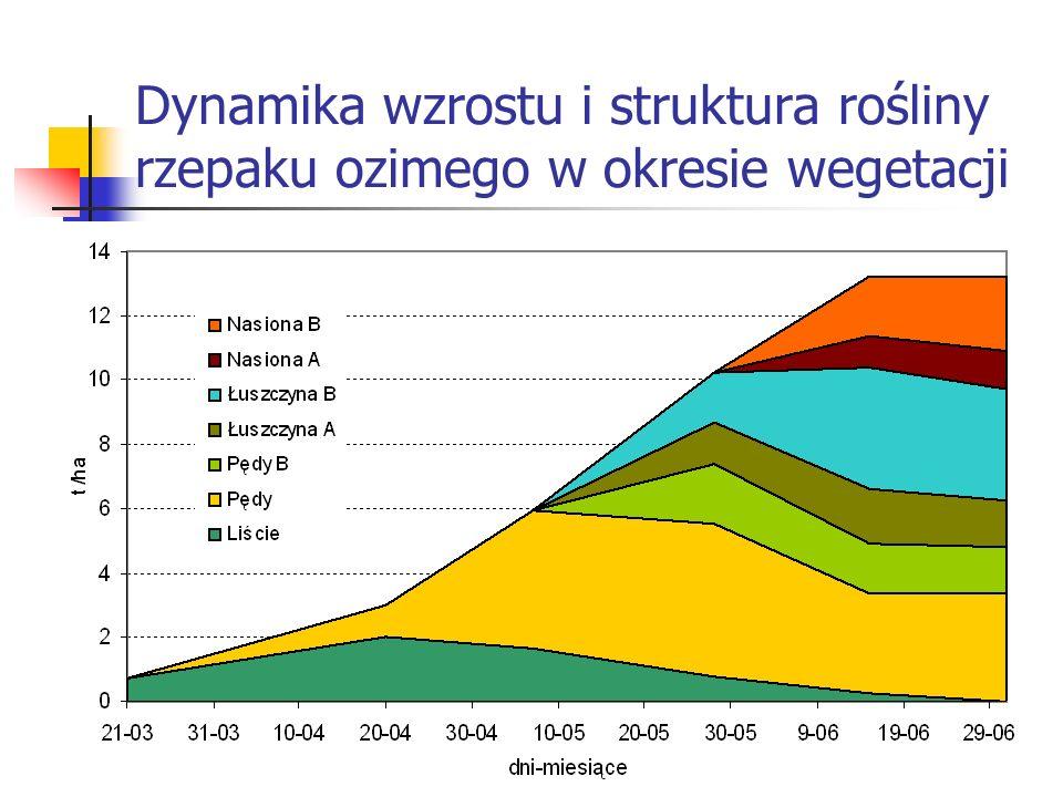 Dynamika wzrostu i struktura rośliny rzepaku ozimego w okresie wegetacji