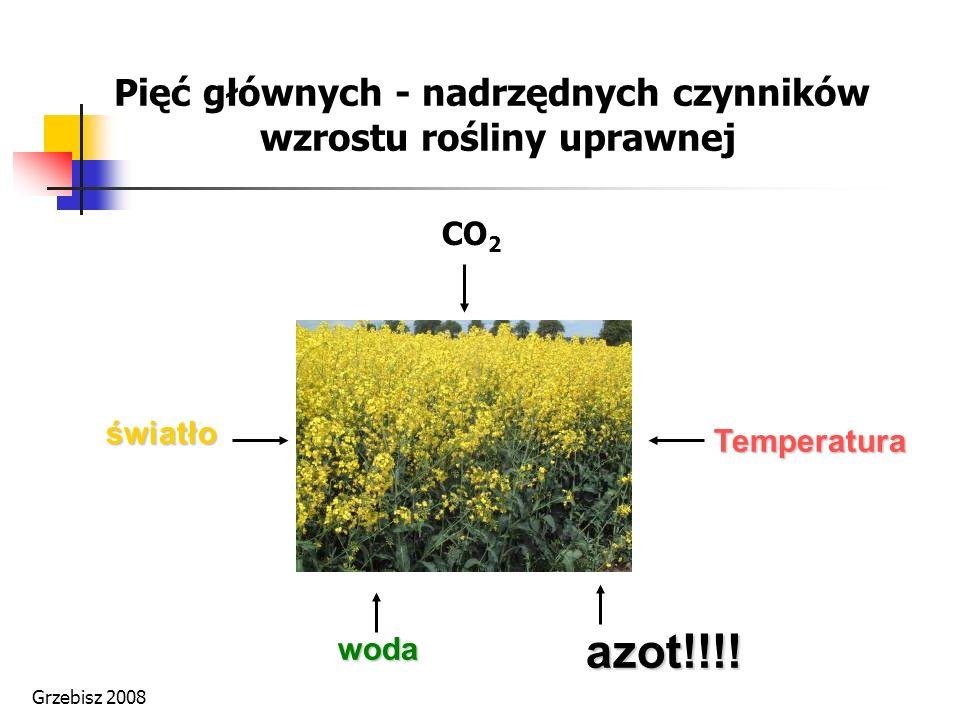 Pięć głównych - nadrzędnych czynników wzrostu rośliny uprawnej