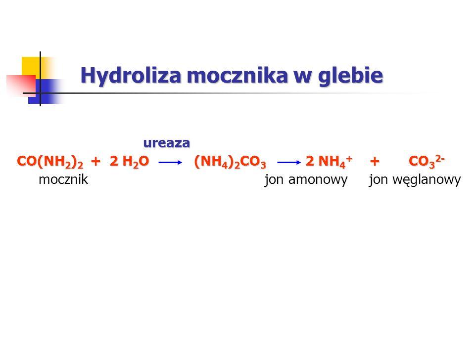 Hydroliza mocznika w glebie