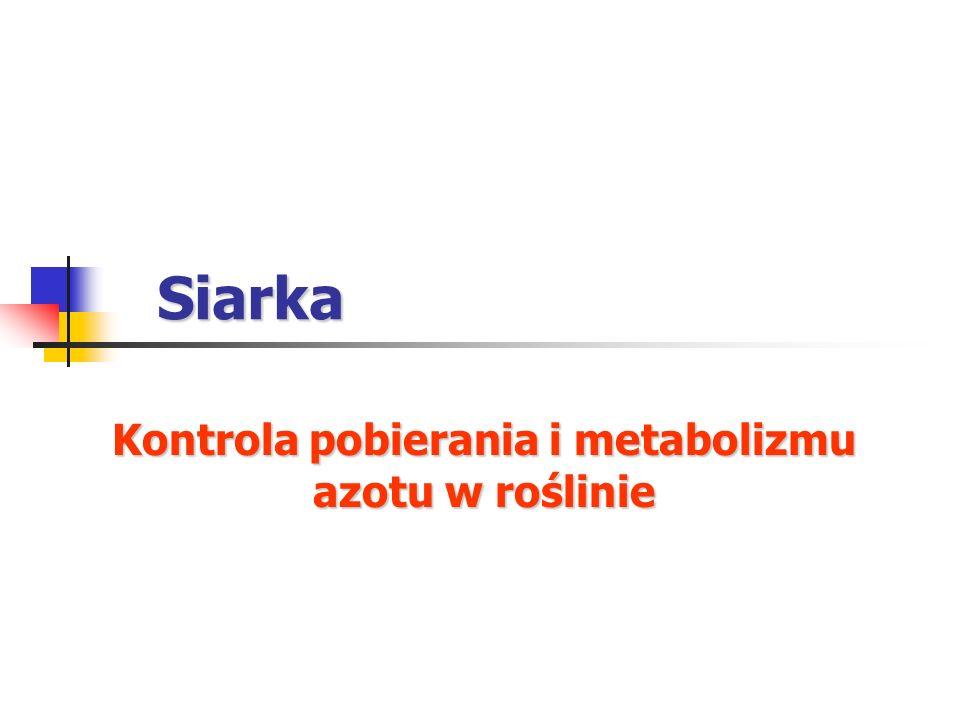 Kontrola pobierania i metabolizmu azotu w roślinie