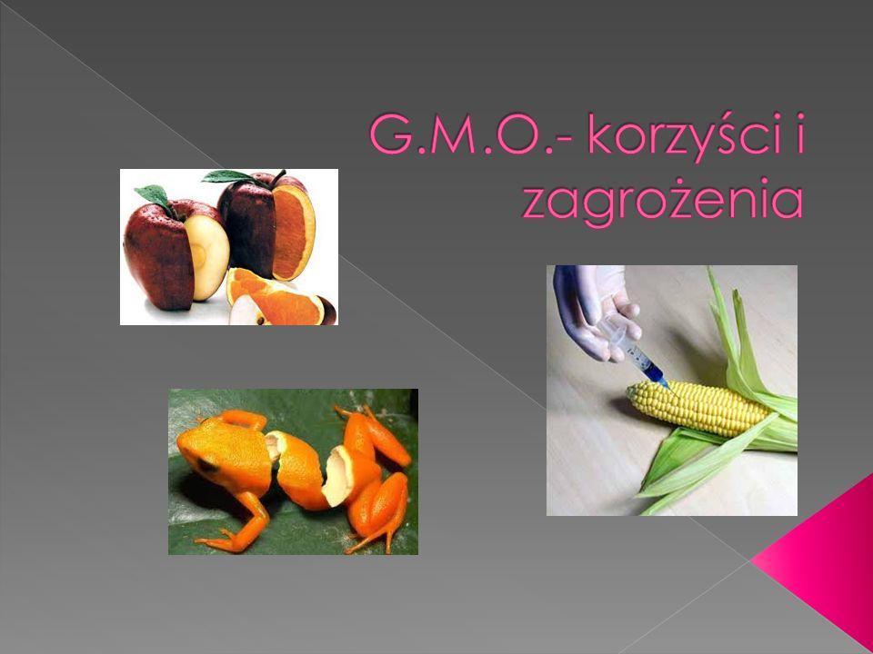 G.M.O.- korzyści i zagrożenia