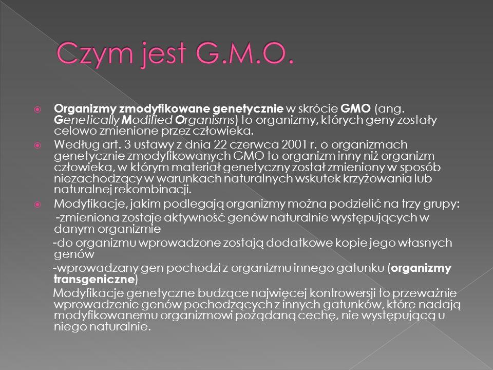 Czym jest G.M.O.