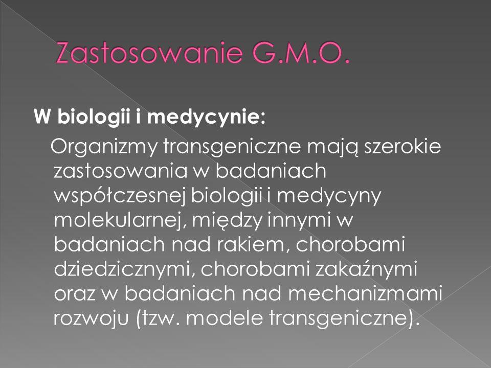 Zastosowanie G.M.O.