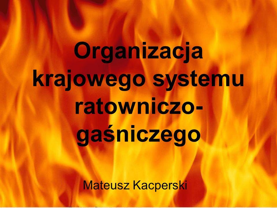 Organizacja krajowego systemu ratowniczo-gaśniczego
