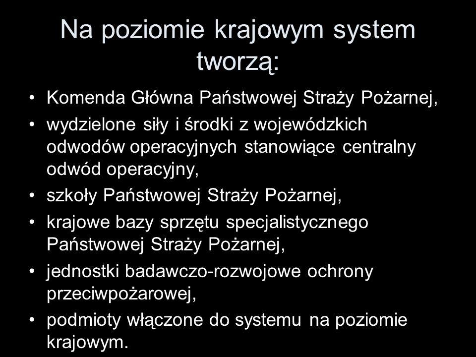 Na poziomie krajowym system tworzą: