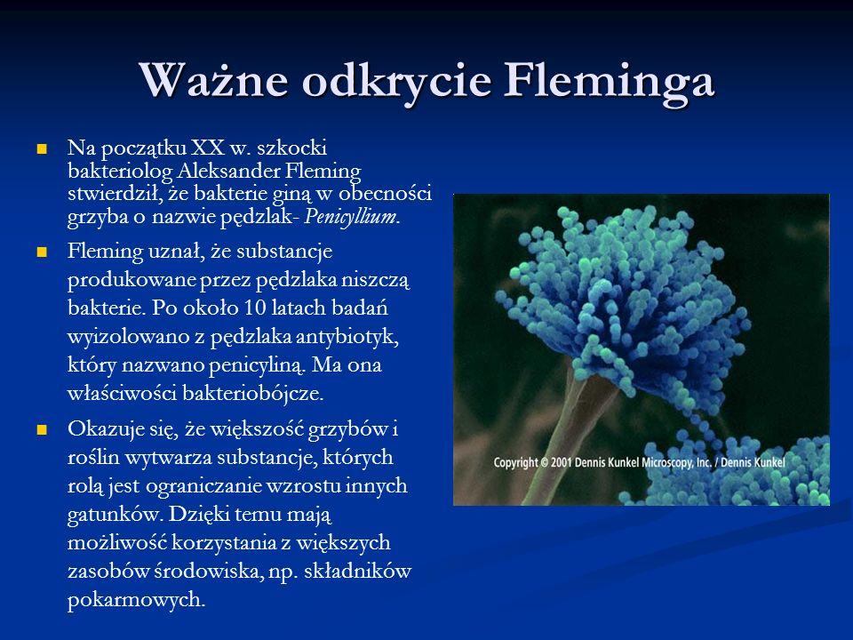 Ważne odkrycie Fleminga