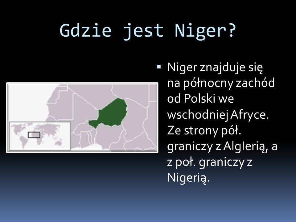 Gdzie jest Niger