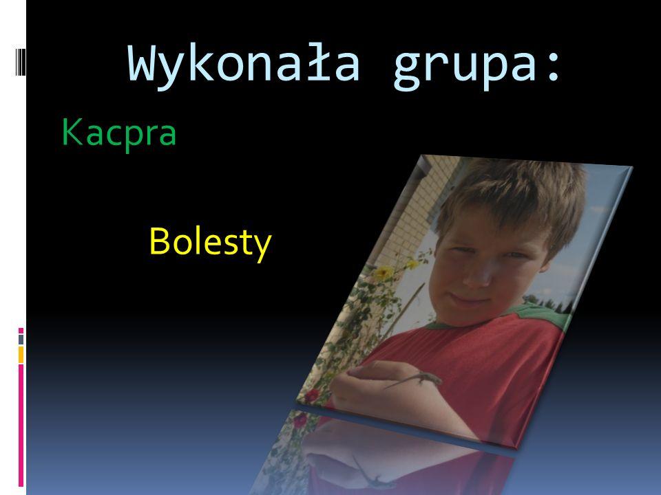 Wykonała grupa: Kacpra Bolesty