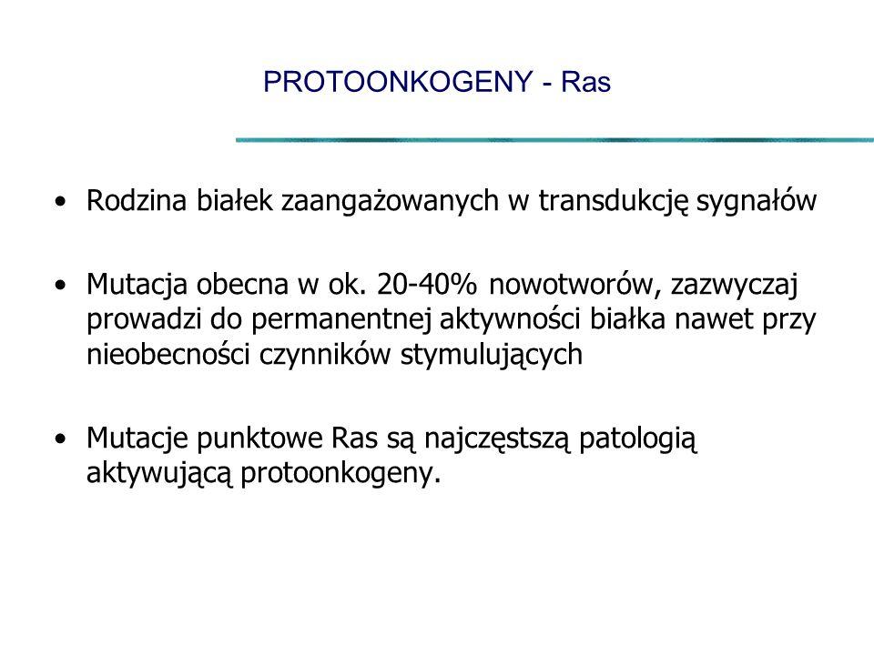 PROTOONKOGENY - Ras Rodzina białek zaangażowanych w transdukcję sygnałów.