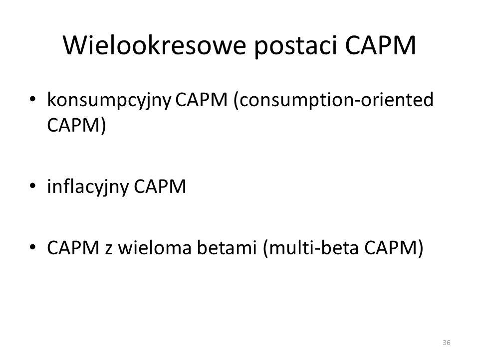 Wielookresowe postaci CAPM
