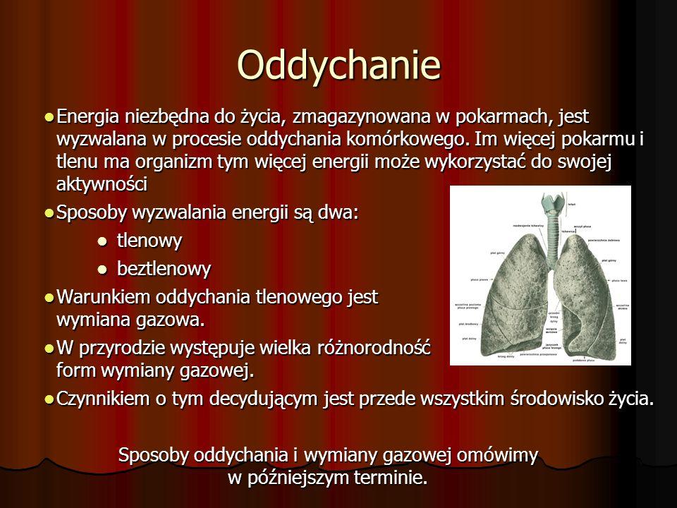 Sposoby oddychania i wymiany gazowej omówimy w późniejszym terminie.