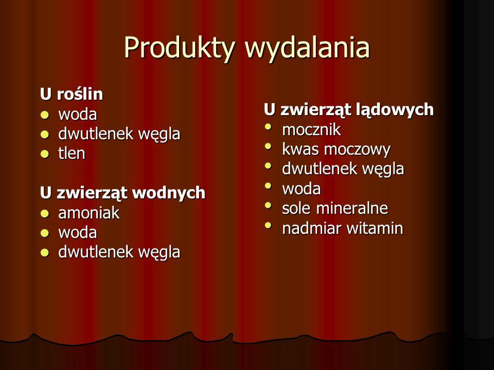 Produkty wydalania U roślin woda U zwierząt lądowych dwutlenek węgla