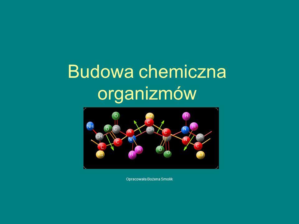Budowa chemiczna organizmów