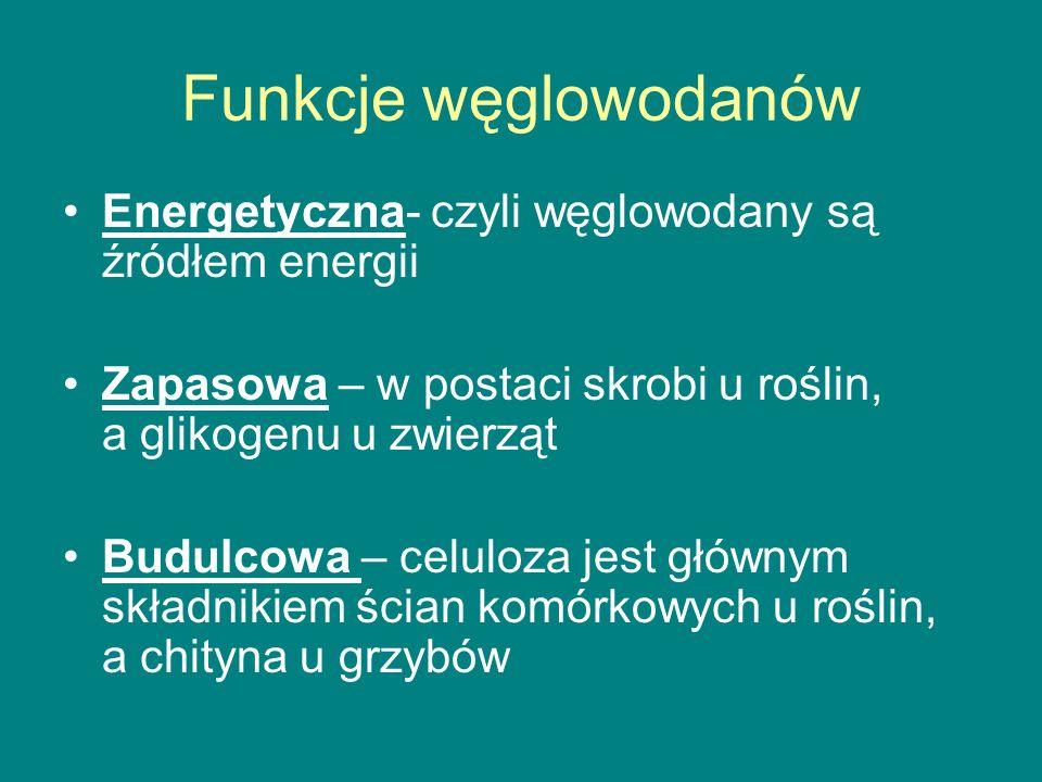 Funkcje węglowodanów Energetyczna- czyli węglowodany są źródłem energii. Zapasowa – w postaci skrobi u roślin, a glikogenu u zwierząt.