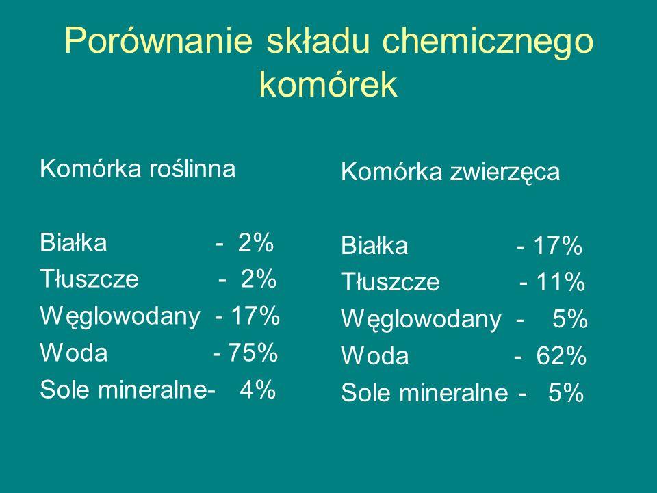 Porównanie składu chemicznego komórek
