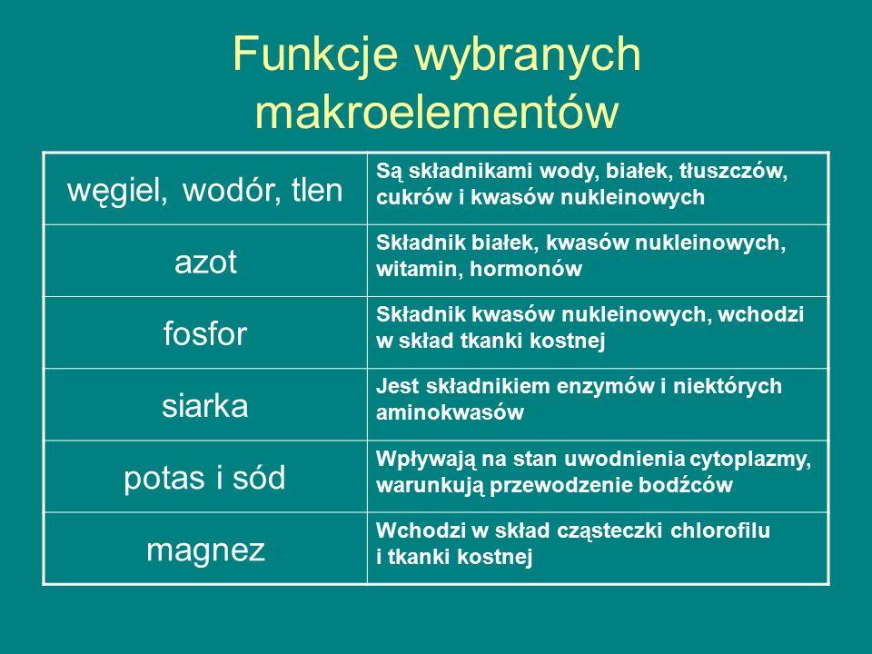 Funkcje wybranych makroelementów