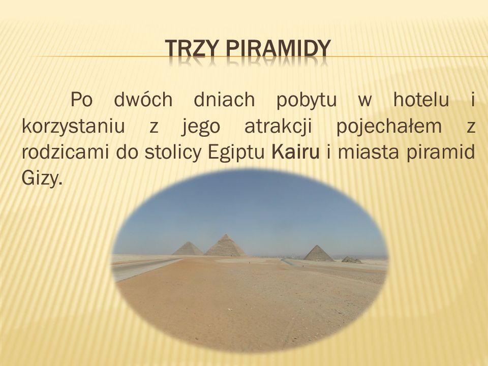 Trzy piramidy Po dwóch dniach pobytu w hotelu i korzystaniu z jego atrakcji pojechałem z rodzicami do stolicy Egiptu Kairu i miasta piramid Gizy.