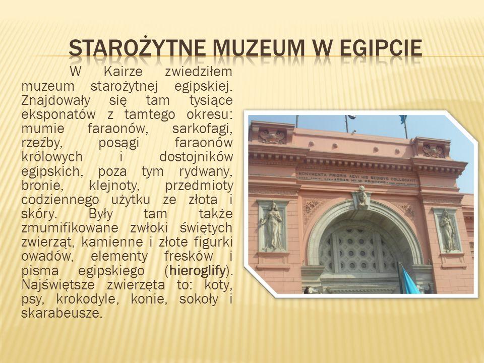 Starożytne muzeum w egipcie