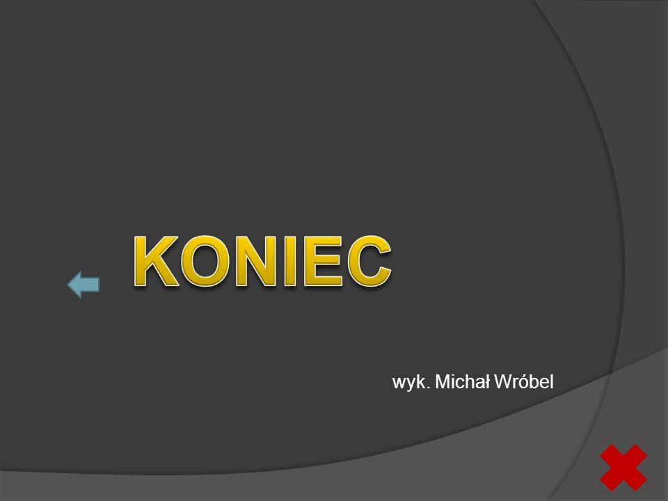 wyk. Michał Wróbel KONIEC