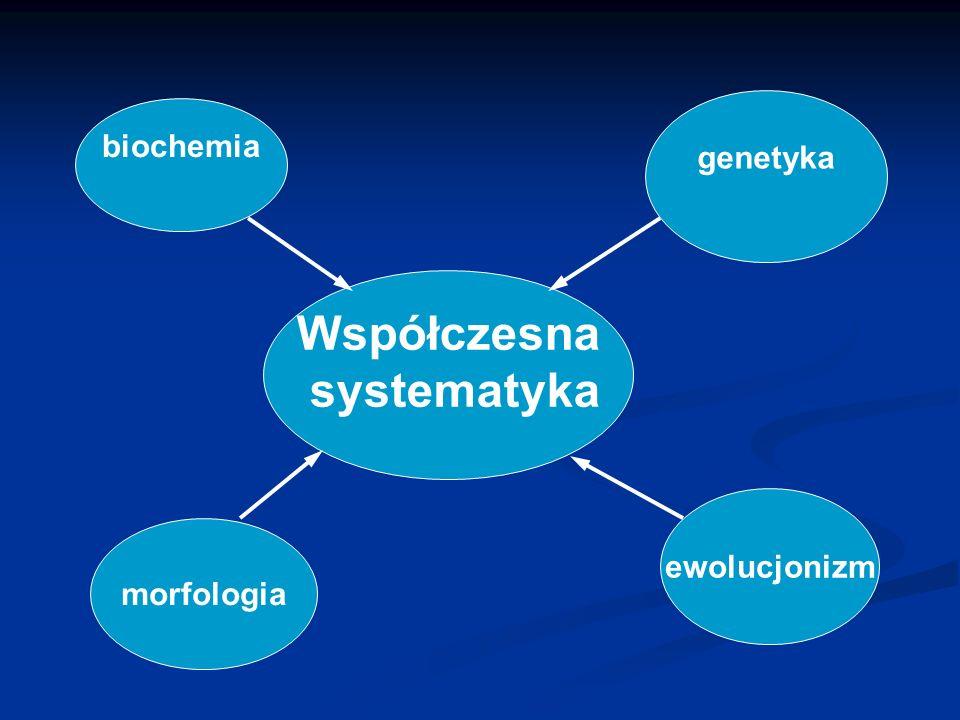 Współczesna systematyka