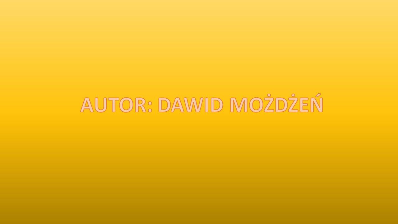 AUTOR: DAWID MOŻDŻEŃ