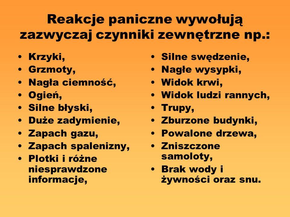 Reakcje paniczne wywołują zazwyczaj czynniki zewnętrzne np.: