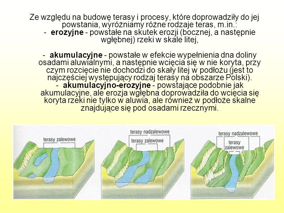 Ze względu na budowę terasy i procesy, które doprowadziły do jej powstania, wyróżniamy różne rodzaje teras, m.in.: - erozyjne - powstałe na skutek erozji (bocznej, a następnie wgłębnej) rzeki w skale litej, - akumulacyjne - powstałe w efekcie wypełnienia dna doliny osadami aluwialnymi, a następnie wcięcia się w nie koryta, przy czym rozcięcie nie dochodzi do skały litej w podłożu (jest to najczęściej występujący rodzaj terasy na obszarze Polski).