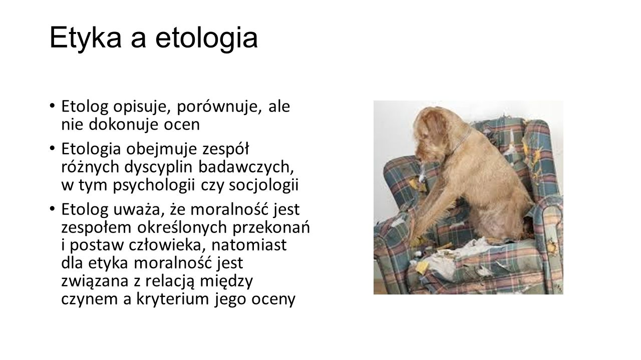 Etyka a etologia Etolog opisuje, porównuje, ale nie dokonuje ocen