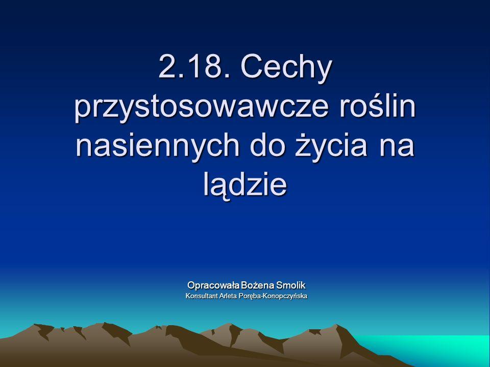 2.18. Cechy przystosowawcze roślin nasiennych do życia na lądzie