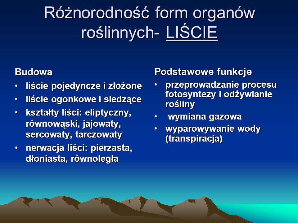 Różnorodność form organów roślinnych- LIŚCIE