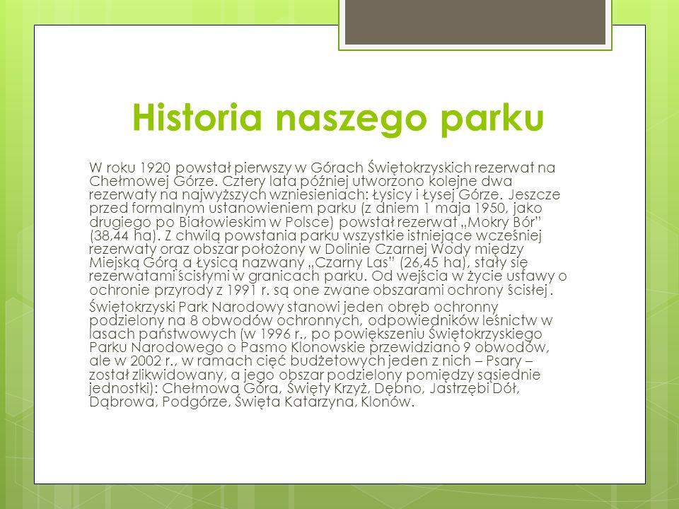 Historia naszego parku