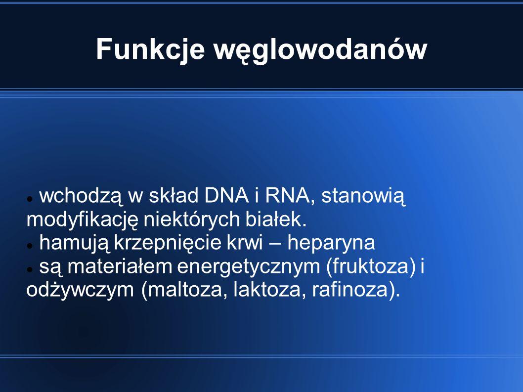 Funkcje węglowodanów wchodzą w skład DNA i RNA, stanowią modyfikację niektórych białek.
