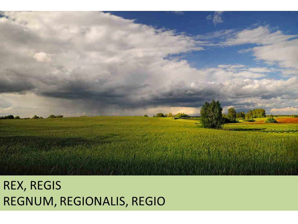REX, REGIS REGNUM, REGIONALIS, REGIO REX, REGIS REGNUM, REGIONALIS, REGIO